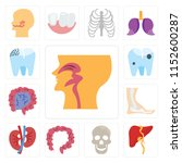 set of 13 simple editable icons ... | Shutterstock .eps vector #1152600287