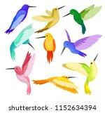 flat vector set of hummingbirds ... | Shutterstock .eps vector #1152634394