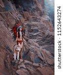 Native American Indian Woman. ...