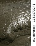 Cracked Brown Mud Flats In The...