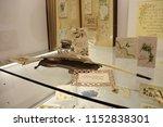 vaduz  liechtenstein   06 08... | Shutterstock . vector #1152838301