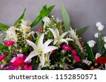 close up view of a vibrant... | Shutterstock . vector #1152850571