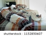 unmade bed with crumpled bed... | Shutterstock . vector #1152850607