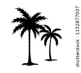 palm tree silhouette vector... | Shutterstock .eps vector #1152877037