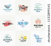 premium quality retro seafood... | Shutterstock .eps vector #1152899141