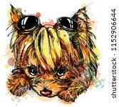 Yorkie Yorkshire Terrier Cute...