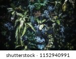 beautiful low key nature... | Shutterstock . vector #1152940991