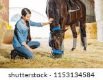 visiting stable. dark haired... | Shutterstock . vector #1153134584