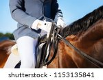 skillful equestrian. young... | Shutterstock . vector #1153135841