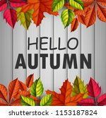 hello autumn . vector... | Shutterstock .eps vector #1153187824