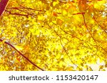 autumn blurred background with... | Shutterstock . vector #1153420147