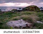 Rocky Seascape Beside Turnberr...