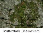 moss stone background | Shutterstock . vector #1153698274