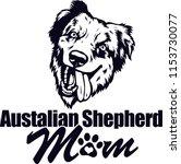 australian shepherd dog breed... | Shutterstock .eps vector #1153730077