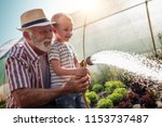 grandfather with his grandson... | Shutterstock . vector #1153737487