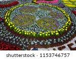 flowerbed with plants landscape ... | Shutterstock . vector #1153746757