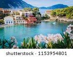 bright white flower blossom in... | Shutterstock . vector #1153954801