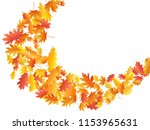 flying oak and maple leaf... | Shutterstock .eps vector #1153965631
