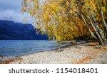 autumn scenery of haast... | Shutterstock . vector #1154018401