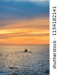 puerto vallarta  mexico   march ... | Shutterstock . vector #1154182141