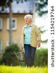 senior woman doing some... | Shutterstock . vector #1154219764