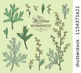 collection of wormwood ... | Shutterstock .eps vector #1154371621