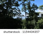 trees  blue sky  clouds. sea... | Shutterstock . vector #1154434357