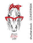 portrait of a elegant horse in... | Shutterstock .eps vector #1154559004