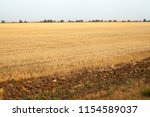 travel to natural places.... | Shutterstock . vector #1154589037