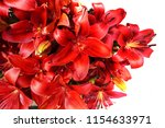 red lilly flowers texture as... | Shutterstock . vector #1154633971