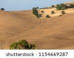 view of olive groves and farms ... | Shutterstock . vector #1154669287