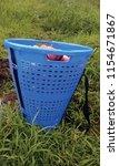 apple basket at nirmand  | Shutterstock . vector #1154671867