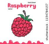 raspberry vector illustration ... | Shutterstock .eps vector #1154784157