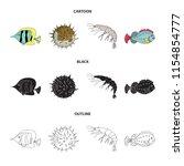 shrimp  fish  hedgehog and... | Shutterstock .eps vector #1154854777