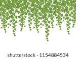 green ivy wall climbing plant... | Shutterstock .eps vector #1154884534