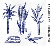 hand drawn sugar cane set... | Shutterstock .eps vector #1154884591