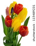bouquet of red and yellow... | Shutterstock . vector #115489231