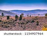 trees growing on hills of ikara ... | Shutterstock . vector #1154907964