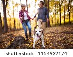 senior couple with dog on a... | Shutterstock . vector #1154932174