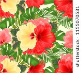 floral arrangement  with... | Shutterstock .eps vector #1155070531