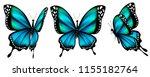 beautiful blue butterflies ...   Shutterstock . vector #1155182764