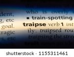 Small photo of traipse word in a dictionary. traipse concept.