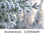 Snow Covered Tree Branch At...