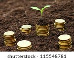 golden coins in soil with young ... | Shutterstock . vector #115548781