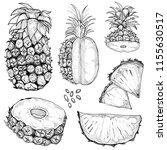 pineapple vector drawing set.... | Shutterstock .eps vector #1155630517