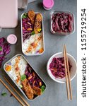 homemade japanese cuisine  ... | Shutterstock . vector #1155719254