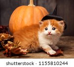 halloween pumpkin jack o... | Shutterstock . vector #1155810244