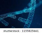 digital dna molecule  structure.... | Shutterstock . vector #1155825661
