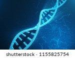 digital dna molecule  structure.... | Shutterstock . vector #1155825754