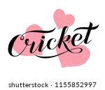 hand drawn cricket lettering... | Shutterstock .eps vector #1155852997